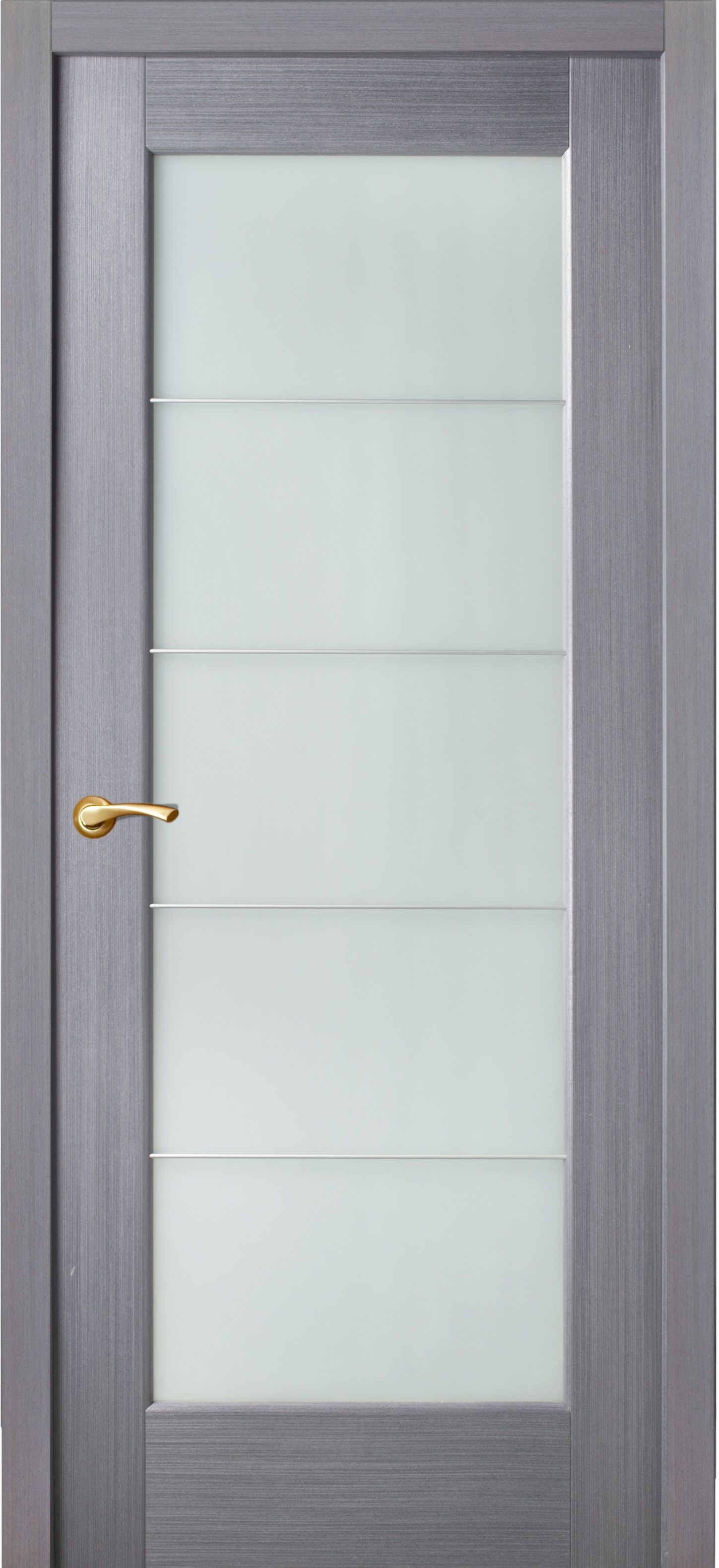Door grey color in the style of techno with five frosted glass separated by aluminum partitions