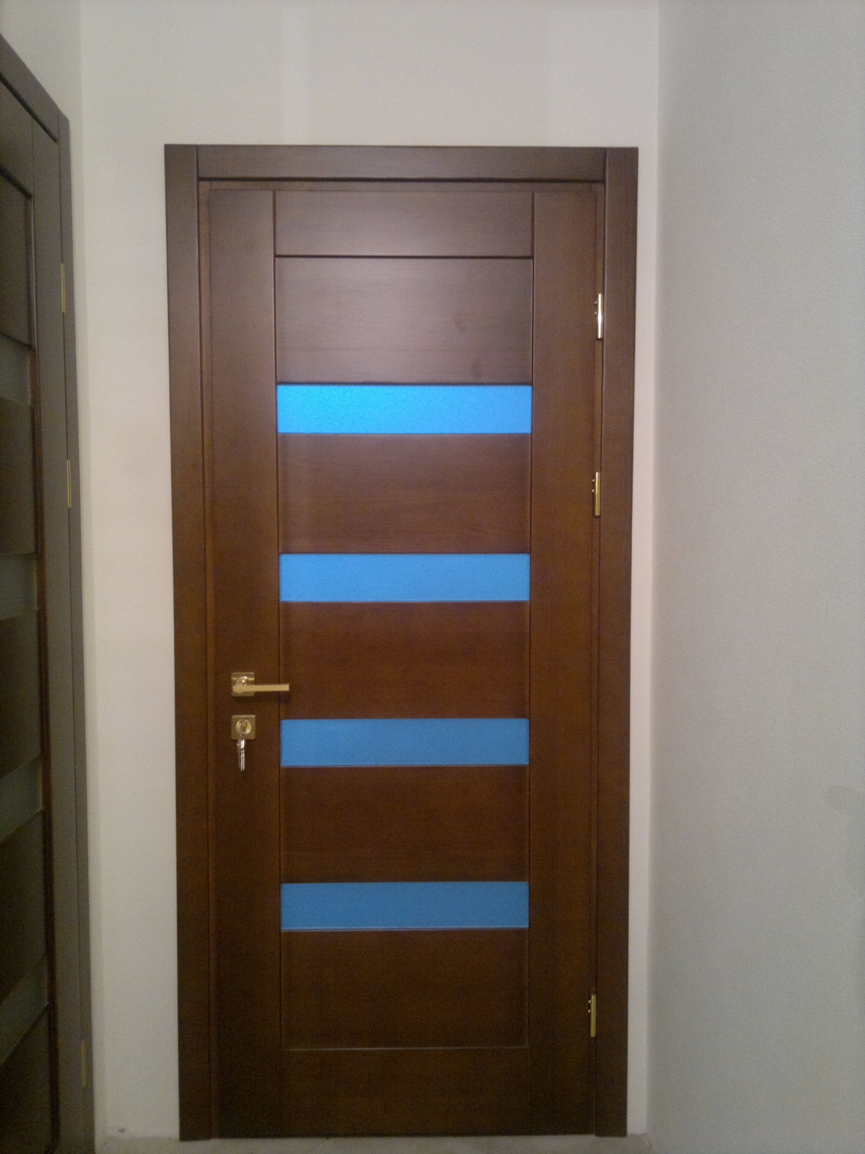 The door is ultra-modern techno style with blue glass