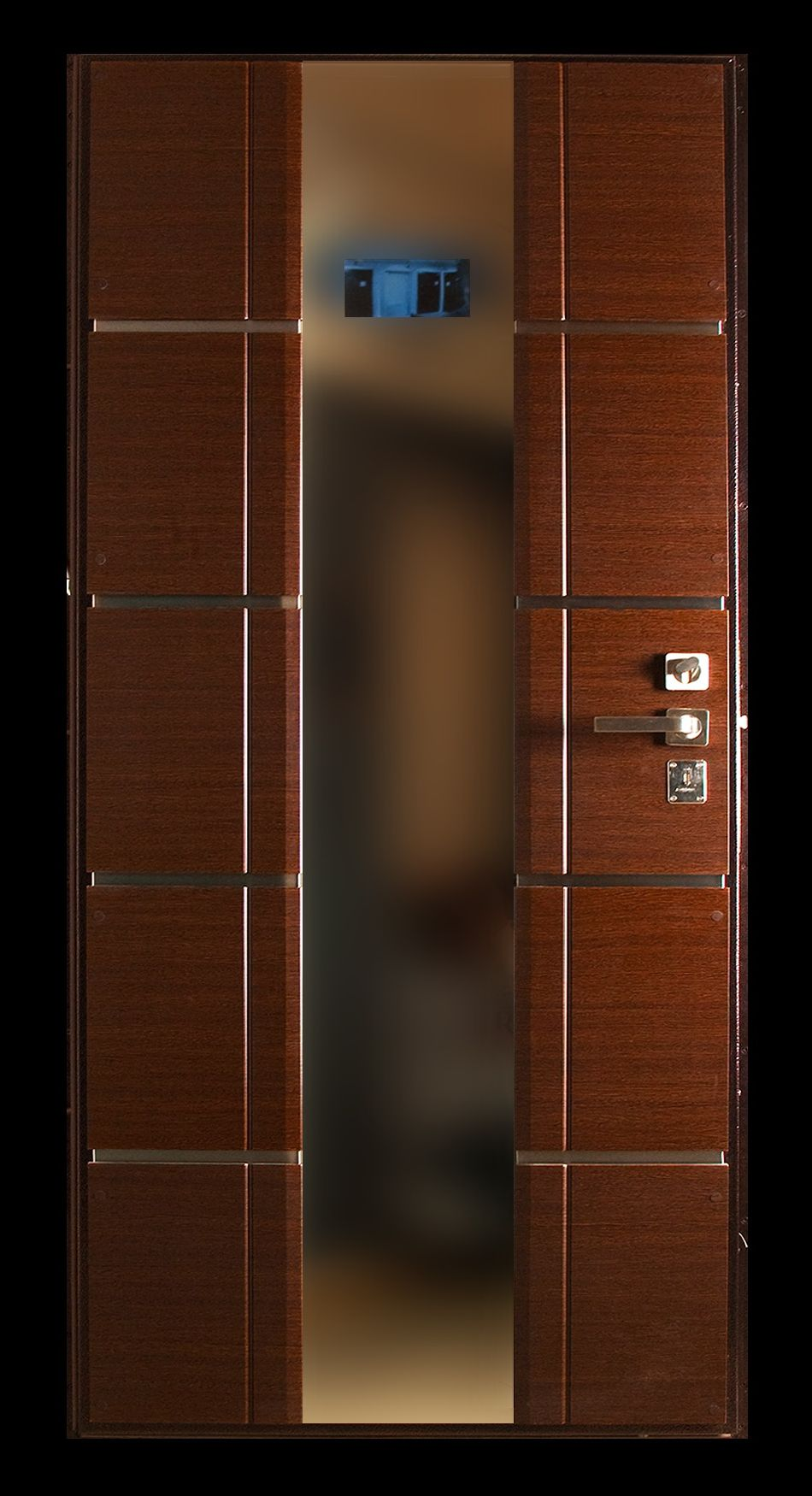 The modern door made of glass and wood in the style of hi-tech
