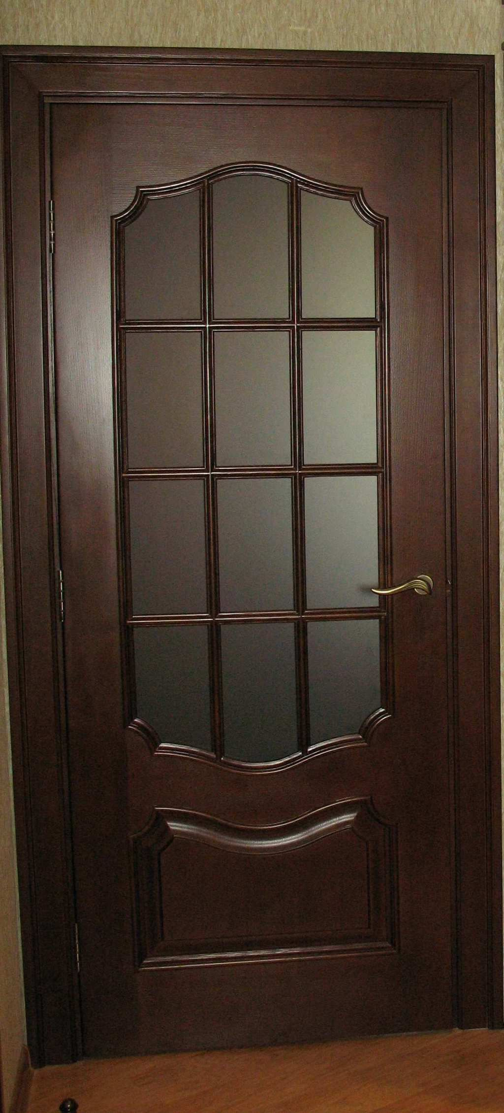 Wooden interior door in dark colors