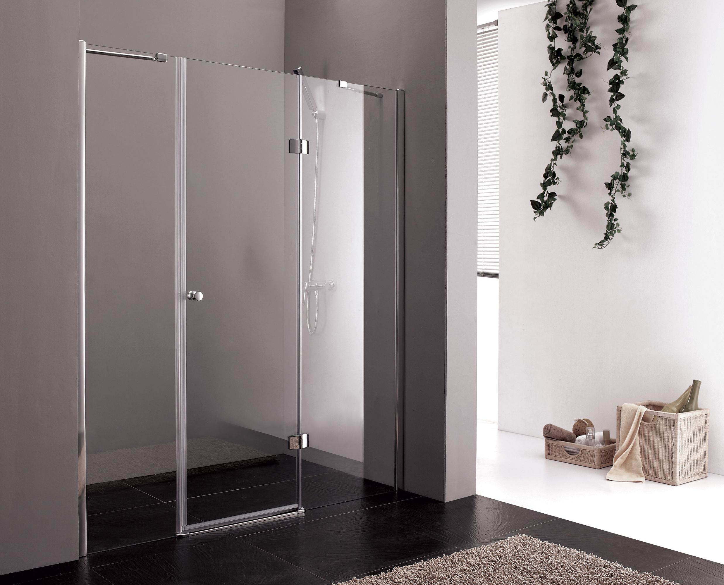 Transparent glass door shower