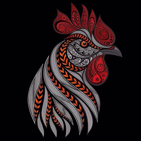 Fire rooster – symbol of new year 2017