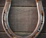 Horseshoe for luck and happiness in interior design