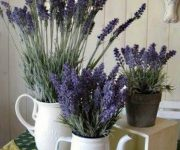 Kitchen Provence Flowers in porcelain vases 180x150 - Provence Style Kitchens – 100 ideas for interior