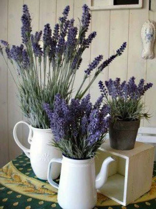 Kitchen Provence – Flowers in porcelain vases